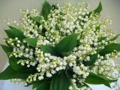 Bouquet du 1ér MAI 2020